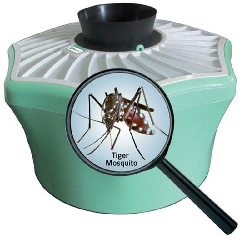 moustique-sen-débarasser كيفية المكافحة بفعالية ضد البعوض؟