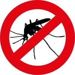 stop-moustiques-250x250 البعوض: الحماية الكاملة مع الفانوس المضاد للبعوض THERMACELL